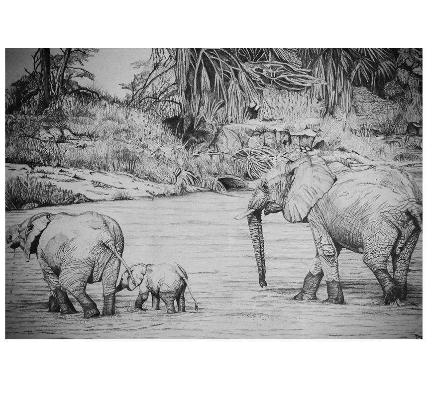 Ima Studio Africa copy