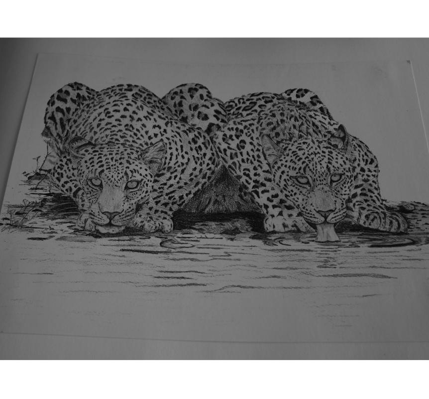 Ima Studio sketch